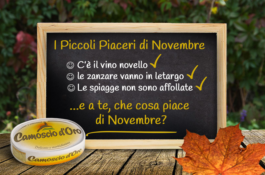novembre_pleasure_lits